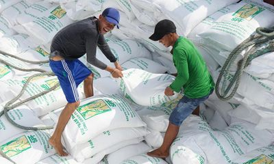 Tân Cảng Hiệp Phước tạm ngừng dịch vụ đóng rút, xuất khẩu gạo gặp khó
