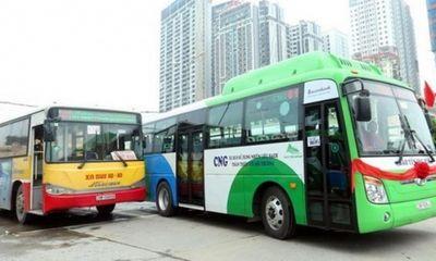 Sở GTVT nói gì về kiến nghị cho xe buýt Hà Nội hoạt động trở lại từ 1/10?