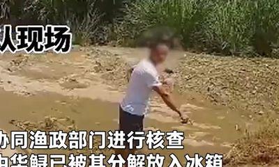 """Vợ khoe video về con cá lạ lên mạng, chồng bị cảnh sát """"sờ gáy"""" vì lý do đầy ngỡ ngàng"""