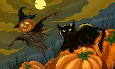 8 việc không nên làm trong ngày lễ Halloween để tránh vận đen đeo bám