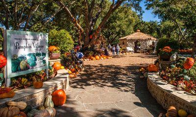 Độc đáo ngôi làng cổ tích được làm từ 90.000 quả bí ngô để đón lễ hội Halloween