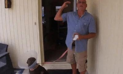 """Tay không """"đương đầu"""" với cá sấu, người đàn ông Mỹ thành công giải cứu chó cưng"""