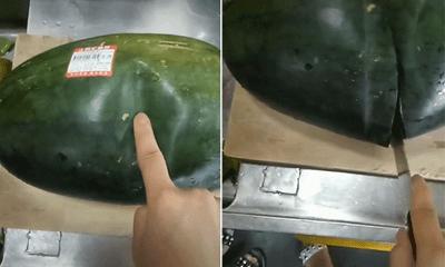 Mua được trái dưa hấu