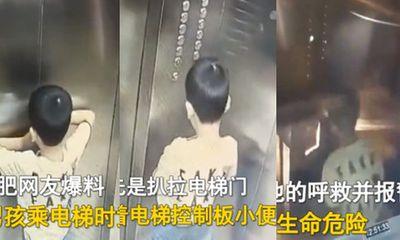 Bé trai có hành vi quá vô tư trong thang máy, cảnh tượng kinh hoàng tiếp theo khiến dư luận hoảng sợ