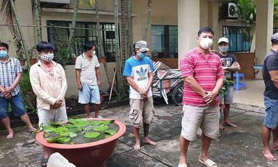 Công an quận Bình Tân triệt phá sới gà, phát hiện một người mắc COVID-19