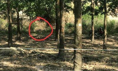 Vụ thi thể nam giới phân hủy trong rừng cao su: Chủ tịch xã nói gì?