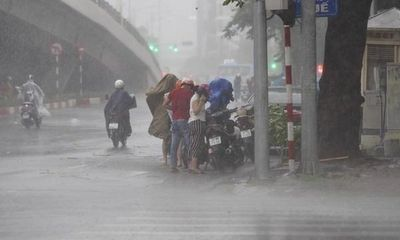 Tin tức dự báo thời tiết hôm nay 24/7: Miền Bắc tiếp tục mưa dông