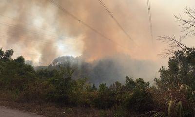 Vụ cháy rừng, gây sự cốnghiêm trọng đường dây 500 kV Dốc Sỏi - Pleiku 2: Hé lộ nguyên nhân