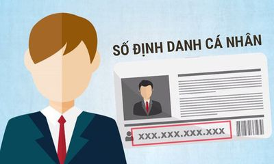 Số định danh cá nhân là gì, có thay mã số thuế được không?