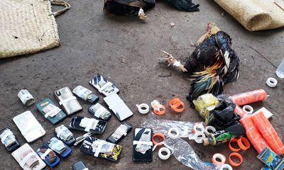 Bị cảnh sát vây ráp, hàng chục con bạc vây quanh sới gà bỏ chạy tán loạn