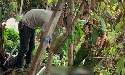 Vụ thi thể thanh niên tại vườn rau ở bãi đất trống: Hé lộ nguyên nhân bất ngờ