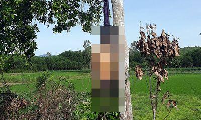 Kinh hãi phát hiện người đàn ông chết trong tư thế treo cổ trên cây