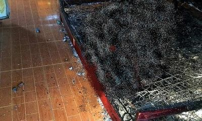 Vụ thi thể cháy đen trên giường trong căn nhà cấp 4 giữa vườn cây: Hiện trường có gì?