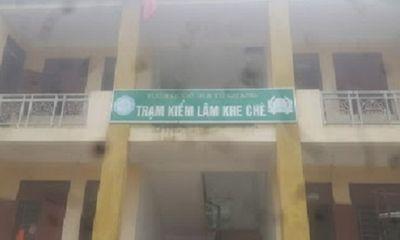 Một cán bộ kiểm lâm tử vong tại nơi làm việc ở Hà Tĩnh
