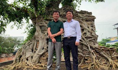Nghệ Nhân Lưu Quang Hưởng: Tôi Trồng Lan Vì Đam Mê