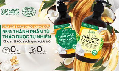 """VTV2 giới thiệu liệu pháp """"Loại bỏ vảy gàu và rụng tóc hiệu quả bằng gừng tươi và dầu dừa"""