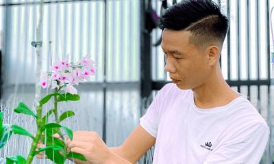 Xã hội - Vườn Lan Bảo Phạm với hàng trăm gốc lan đột biến quý hiếm nổi tiếng Đăk Nông