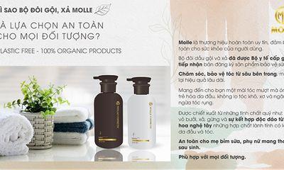 Bộ đôi tinh chất gội, xả thảo dược thiên nhiên Molle – lựa chọn an toàn cho mọi đối tượng