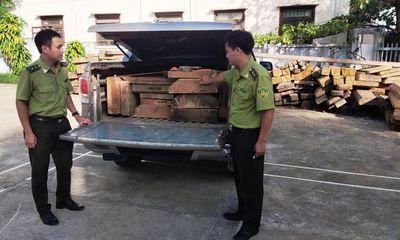 Ô tô chở gỗ lậu đeo biển giả, tháo chạy với vận tốc hơn 100km/h khi bị phát hiện