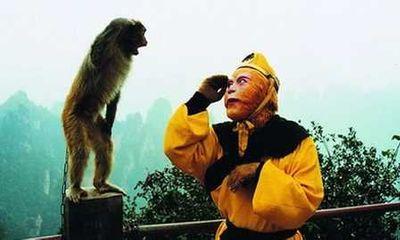 Tây Du Ký: Bất ngờ về loại võ công được Tôn Ngộ Không dùng khi đại náo Thiên cung