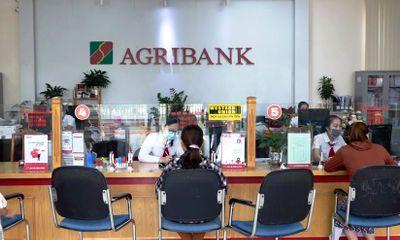 6 tháng đầu năm 2021: Agribank hoạt động an toàn, hiệu quả, tích cực hỗ trợ khách hàng và nền kinh tế