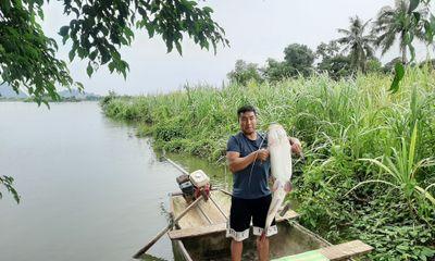 Thanh Hóa: Ngư dân bắt được cá lăng