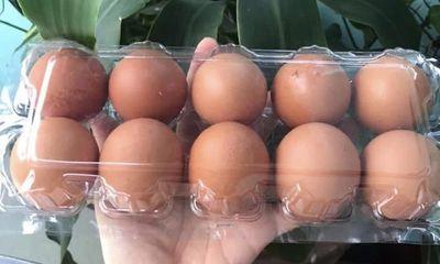 Lý giải việc trứng gà, vịt tăng giá tới 6.000 đồng/quả vẫn cháy hàng