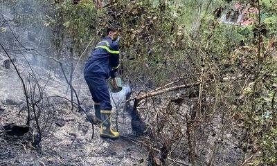 Nghệ An: Vứt tàn thuốc lá bừa bãi, người đàn ông khiến rừng phòng hộ cháy trơ trụi
