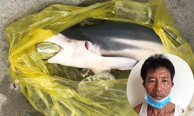 Tin tức thời sự mới nóng nhất hôm nay 2/9: Con nghiện cho cá nuốt ma túy hòng qua mặt cơ quan chức năng