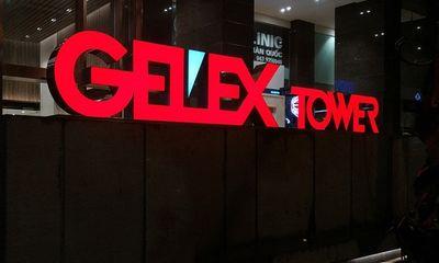 Gelex muốn cơ cấu lại sở hữu tại Viglacera