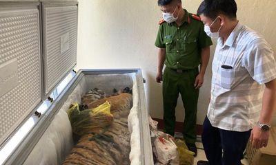 Hà Tĩnh: Phát hiện xác hổ 160kg trong tủ đông lạnh ở nhà dân