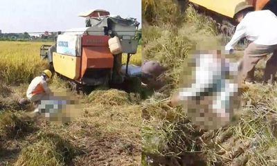 Hải Dương: 2 người tử vong giữa cánh đồng, trên cơ thể có vết cháy