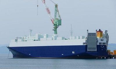 Nhật Bản: Tàu hàng trọng lượng hơn 11.000 tấn bị lật sau va chạm với tàu nước ngoài