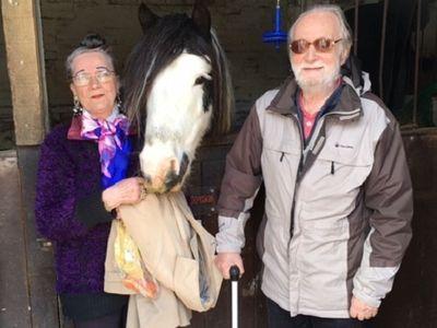 Cụ bà 78 tuổi gây bất ngờ khi lấy chồng lần thứ 7 chỉ sau một lần gặp tại bến xe buýt