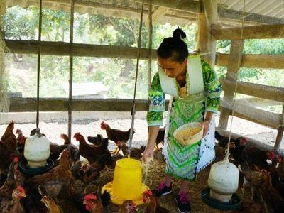 Thái Nguyên: Nỗ lực giảm nghèo, không để ai bị bỏ lại phía sau