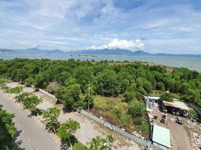 Đà Nẵng sẽ thu hồi 181ha đất tại dự án Khu đô thị quốc tế Đa Phước