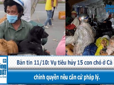 Vụ tiêu hủy 15 con chó ở Cà Mau, chính quyền nêu căn cứ pháp lý