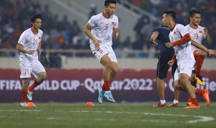 Tin trong nước - Tiết lộ về HLV Park Hang-seo trước trận Việt Nam- UAE