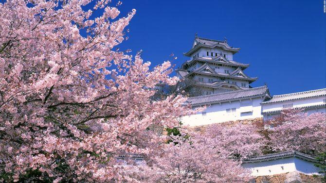 Lạc vào chốn thần tiên ở Nhật Bản - Ảnh 24