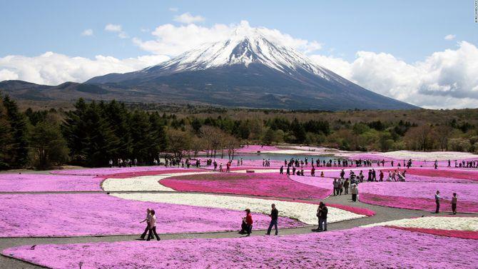 Lạc vào chốn thần tiên ở Nhật Bản - Ảnh 29