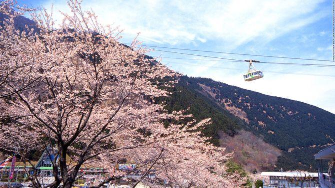 Lạc vào chốn thần tiên ở Nhật Bản - Ảnh 6