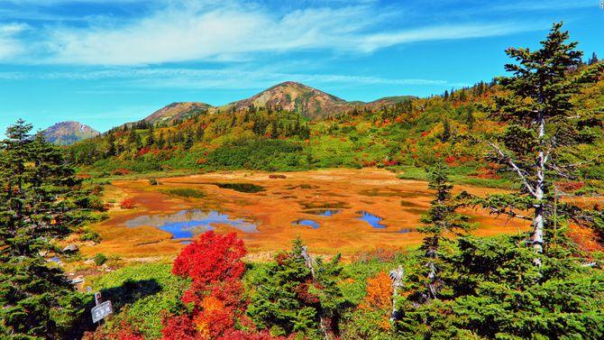 Lạc vào chốn thần tiên ở Nhật Bản - Ảnh 9